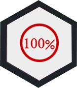 100%安全保证