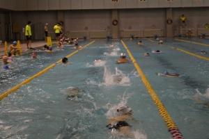 游泳教练培训
